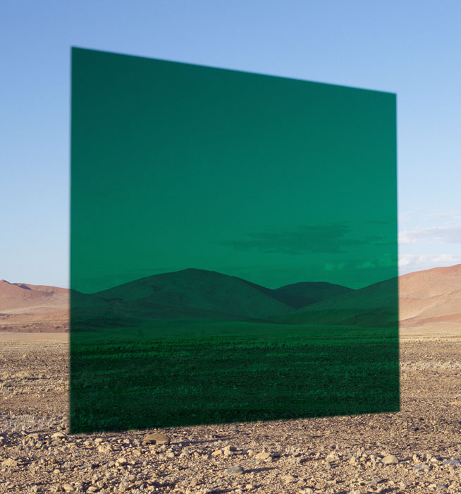 Viviane Sassen Green Vlei 2014 C-print Represented by Stevenson Gallery