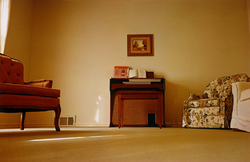 1. William Eggleston  2. Untitled (From Troubled Waters Portfolio)  3. 1980  4. Portfolio of Fifteen Dye-Transfer Prints  5. Represented by the Eggleston Artistic Trust