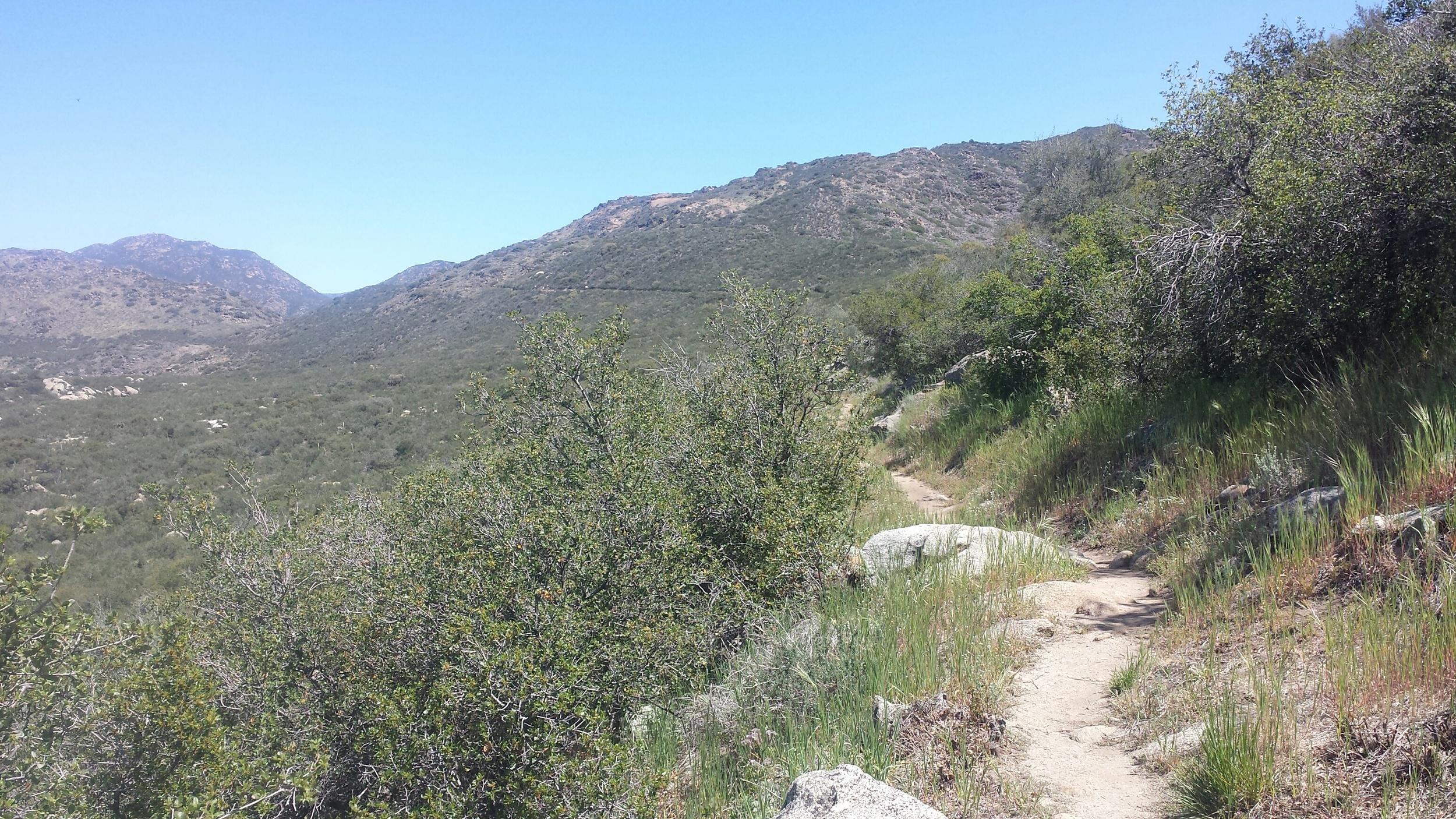So much trail.