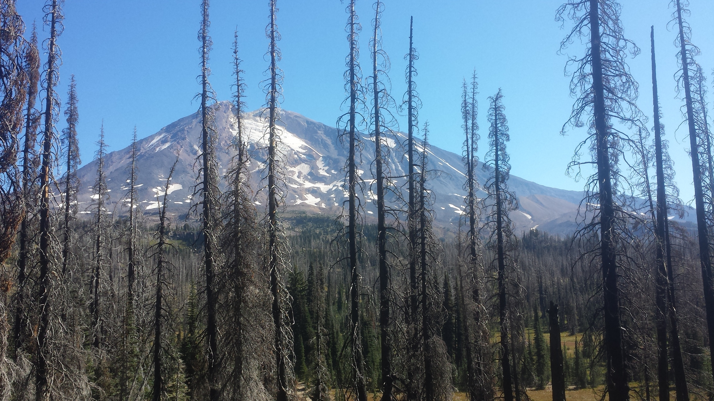 burn below mt adams
