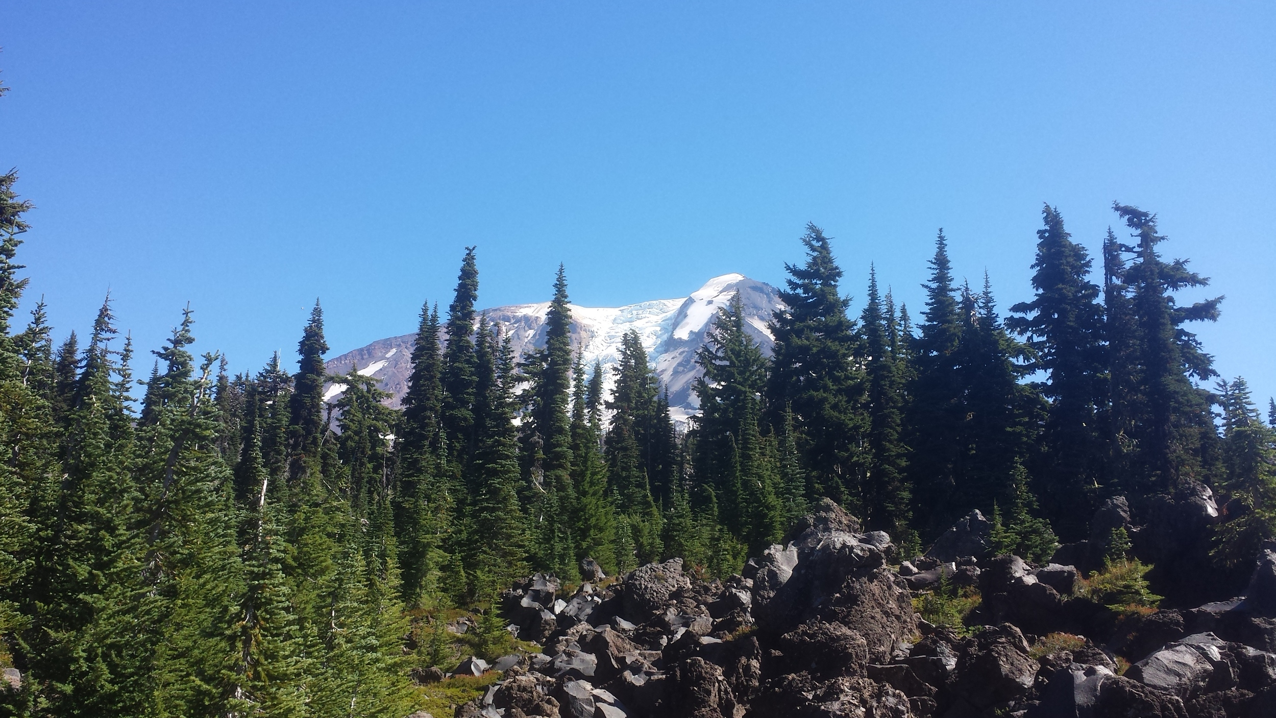 mt adams glacier