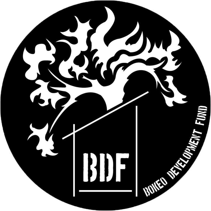 BDF-black.jpg