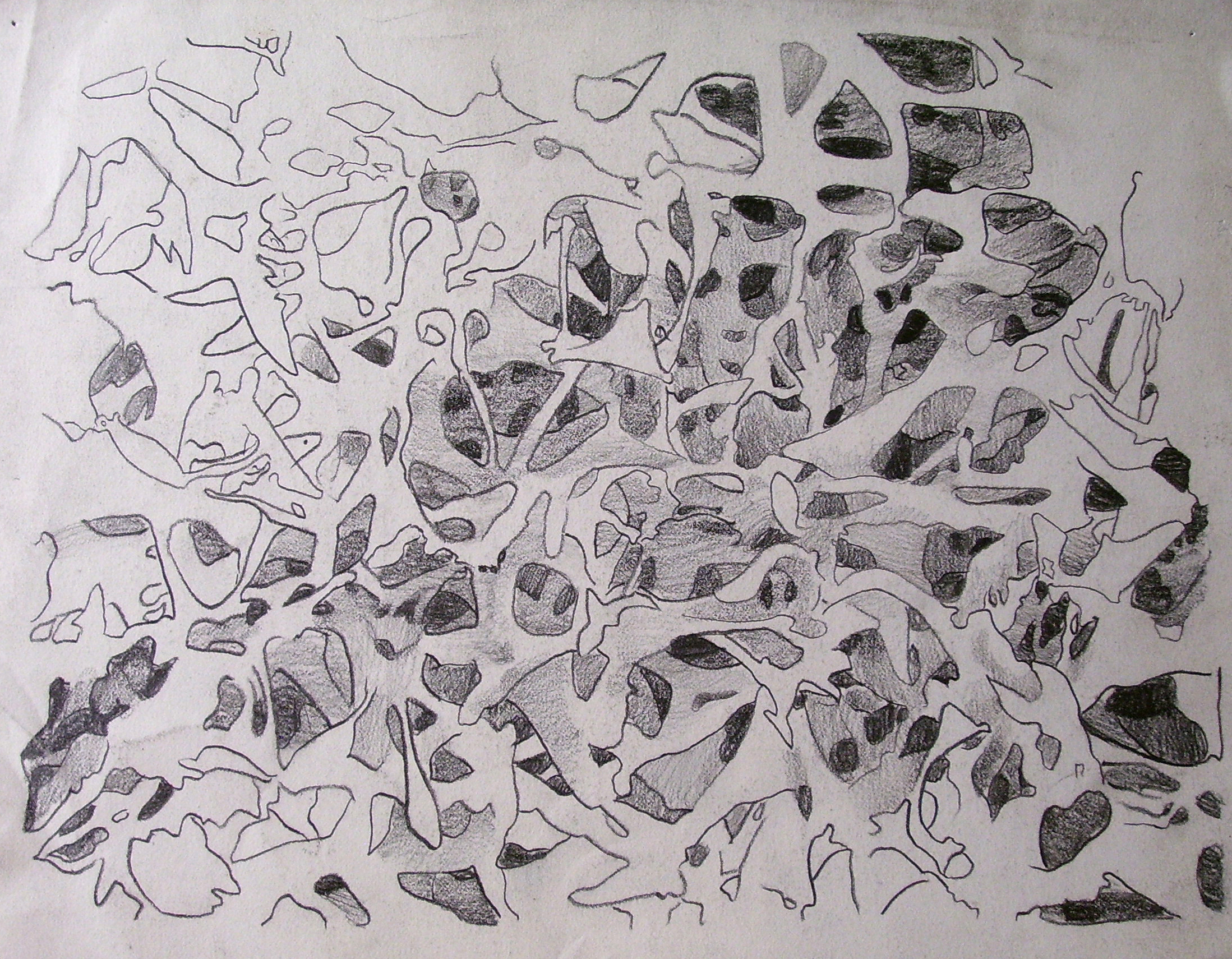 Galactic Sponge/ 2004/ graphite on paper/ 9 x 12 inches