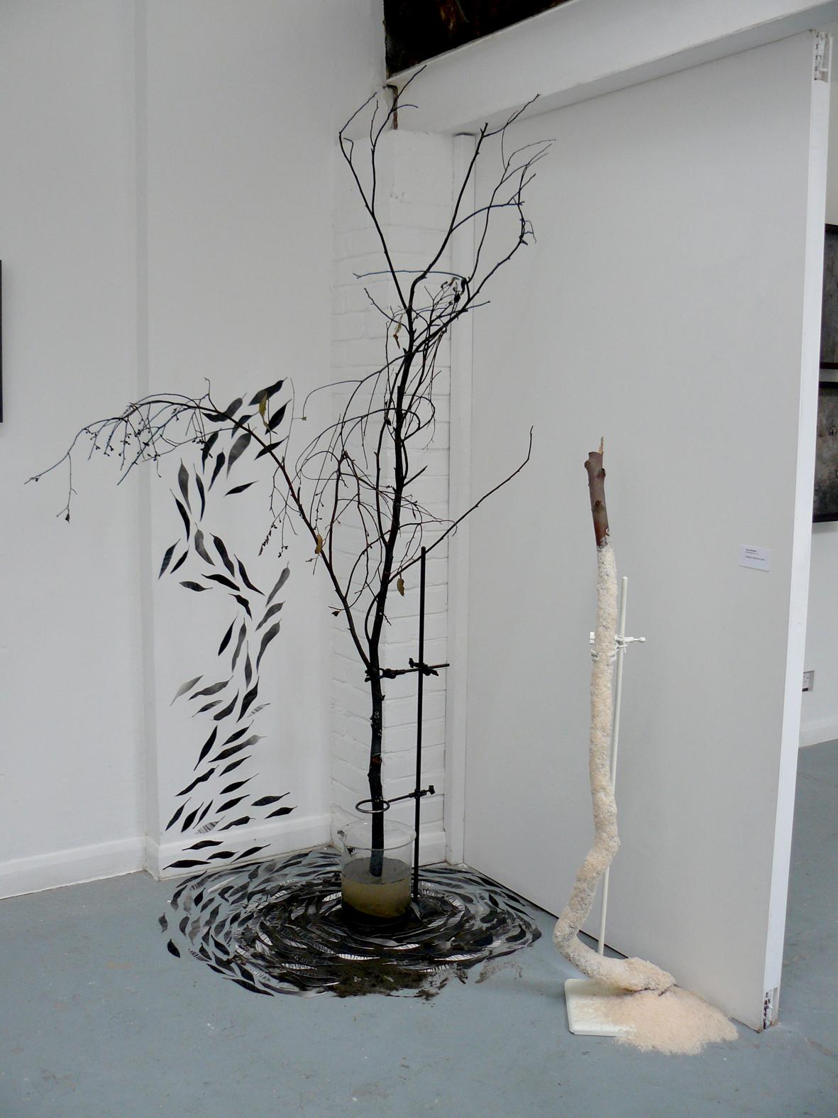 installation view, Landscape of Change exhibition 2011