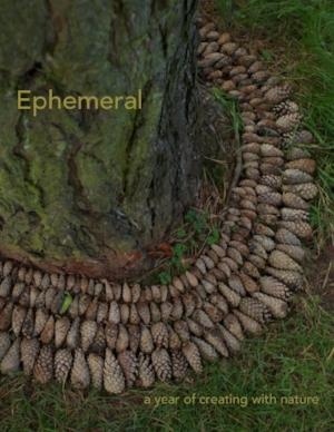 ephemeralcover_2.jpeg