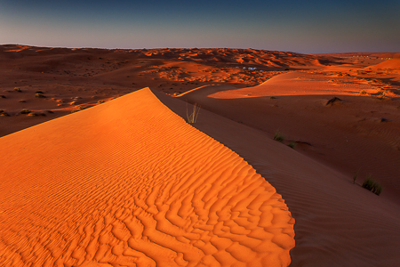 The dunes at sunset