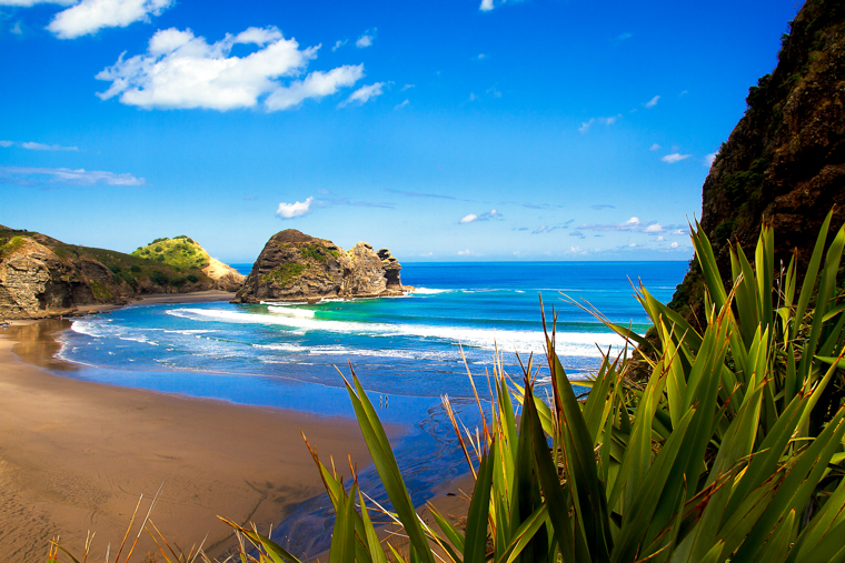 From Lion Rock looking across Piha's main beach to Camel Rock