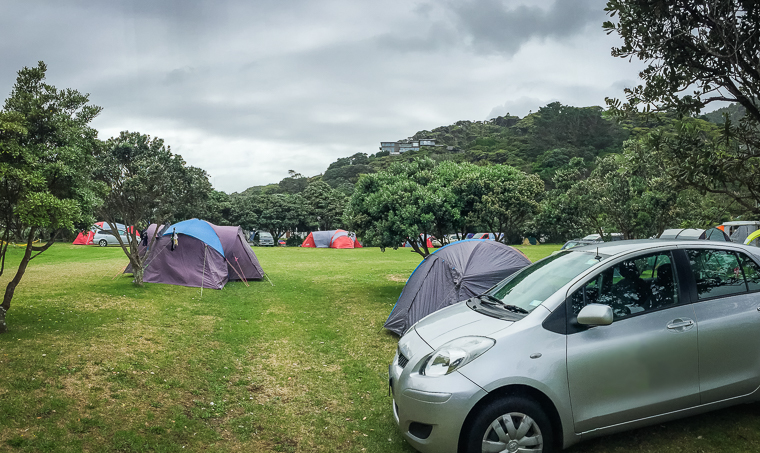Pleasurable camping at Piha Domain
