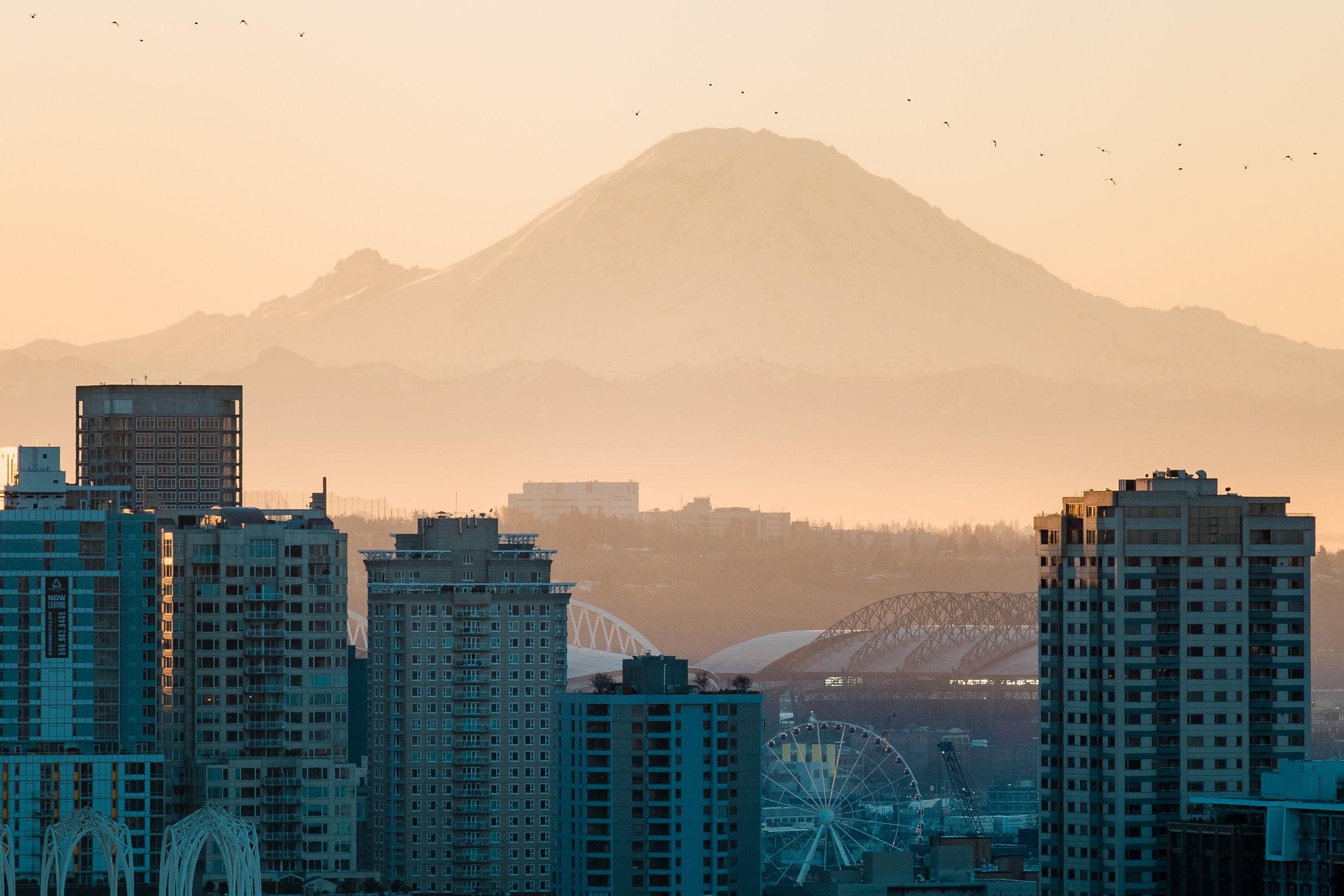 D2S1_Seattle_00132.jpg
