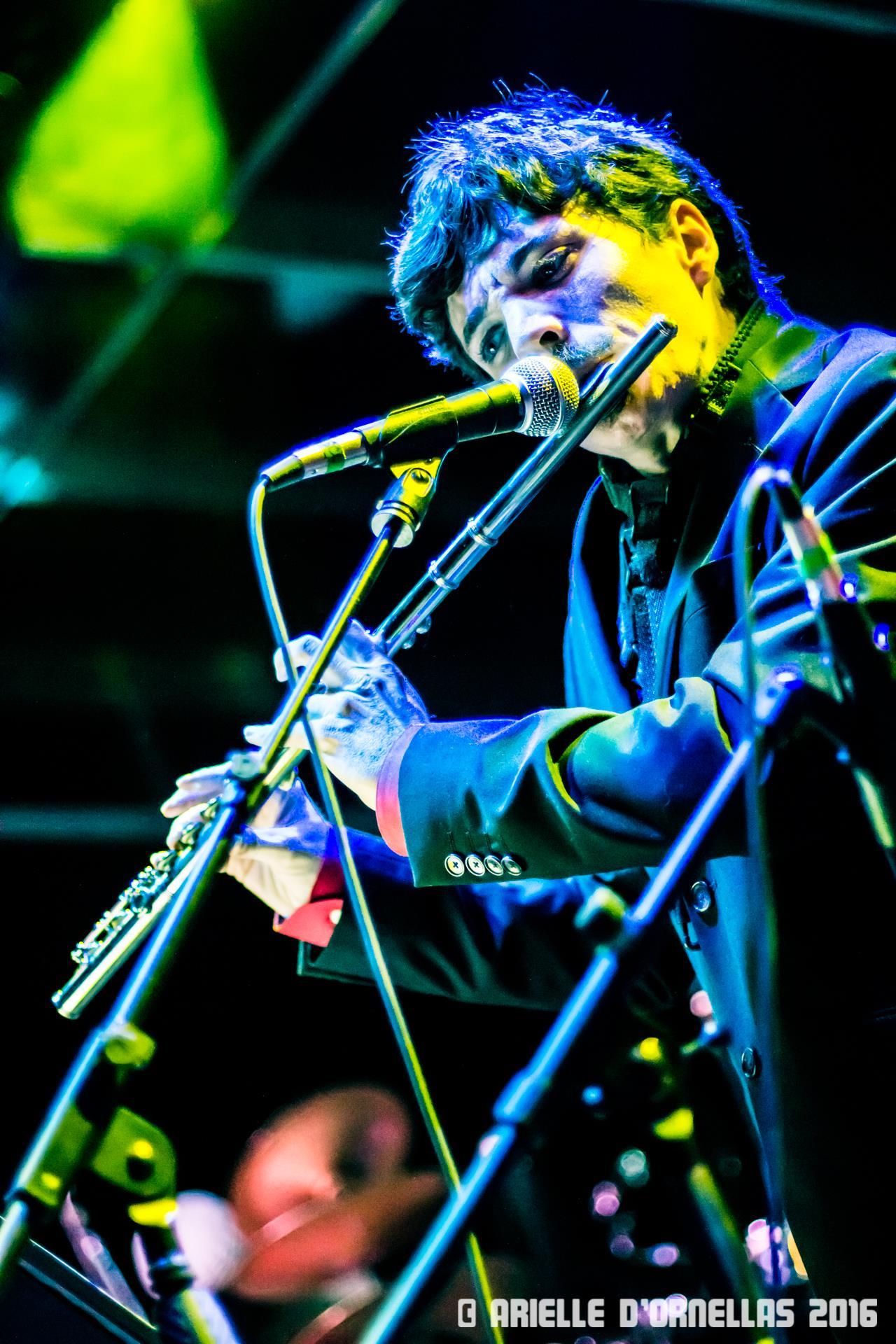Flute w: Jacket at Hometeam.jpg