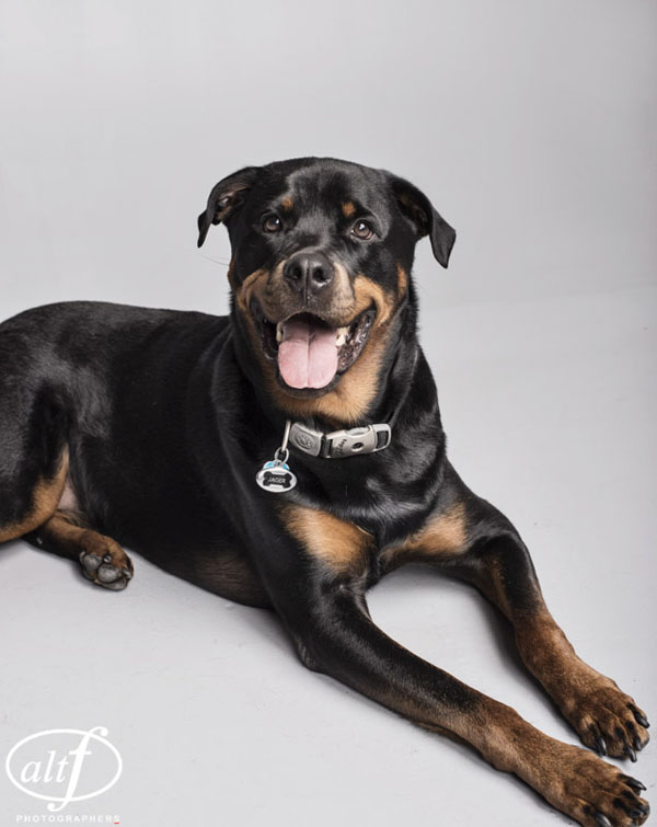 Jager, sitting for his formal portrait by www.altf.com.
