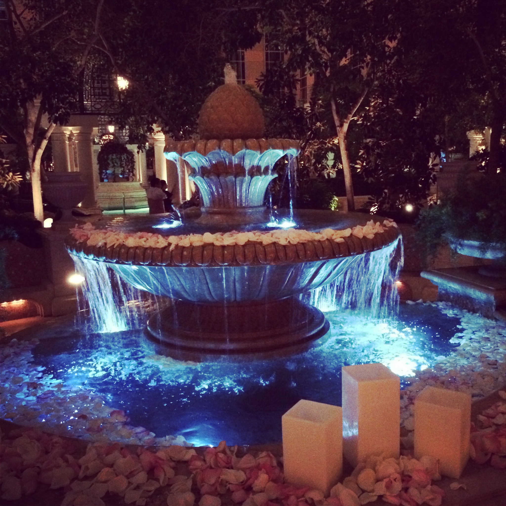 Michelle & Curtis were married in the Venetian Terrace.  The fountain, petals, lights and trees make it so intimate and beautiful. Photo by Andrea Eppolito Events.