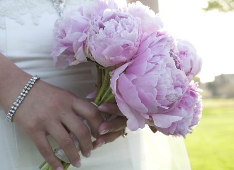 Perfect pink peonies for the bride's bouquet.