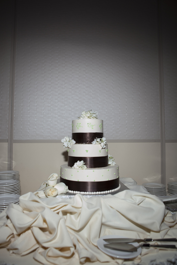 The couple chose a simple, classic wedding cake wrapped in butter cream. Photo by www.altf.com.