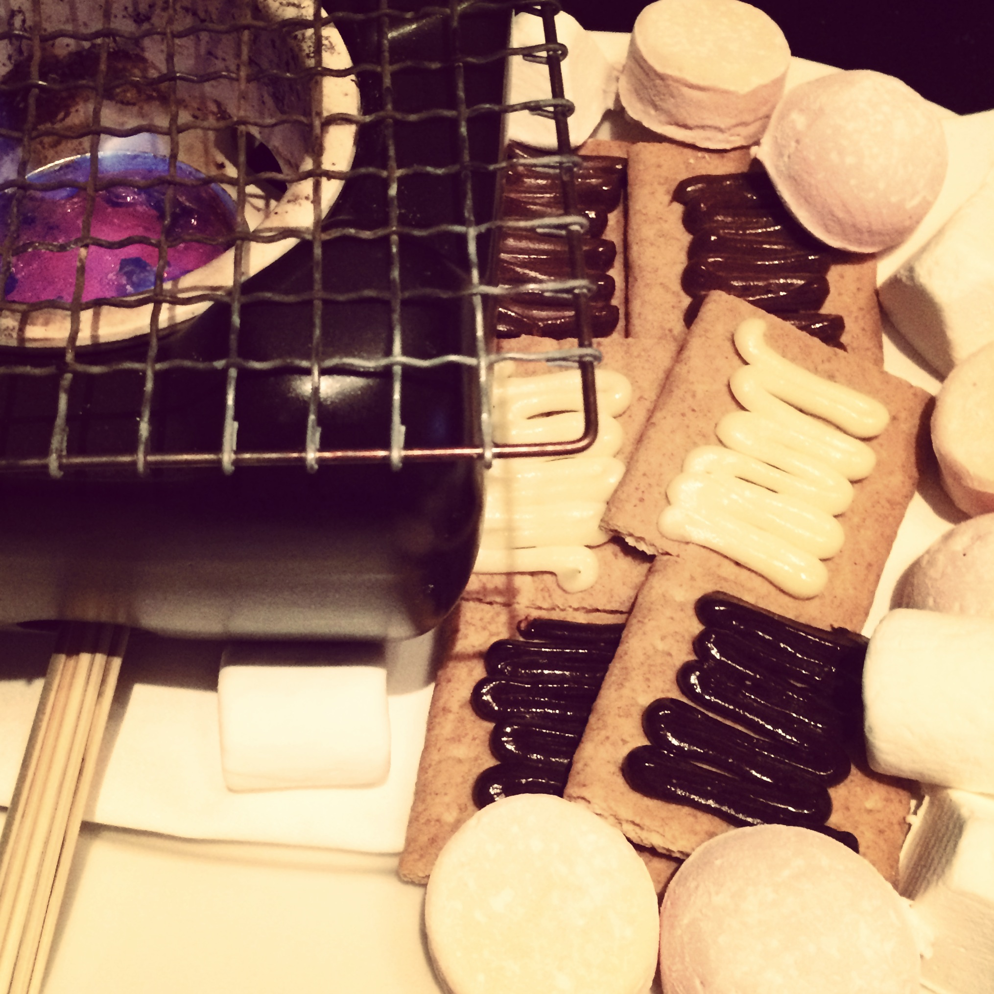 N9NE Steakhouse S'Mores - One of my favorite desserts.