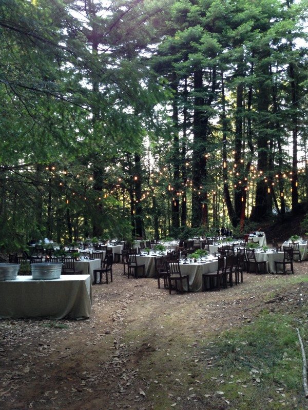 A woodland wedding is both cozy and romantic. Photo courtesy of  Shelter-co.com .