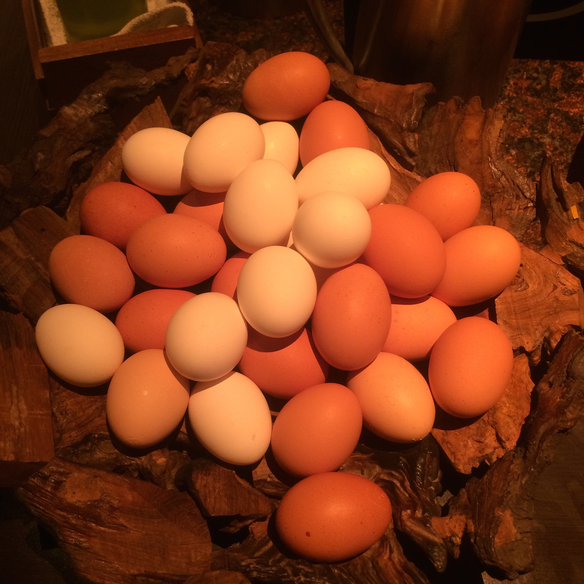 Super cool egg display at The Cromwell- I will be doing this at my next brunch!