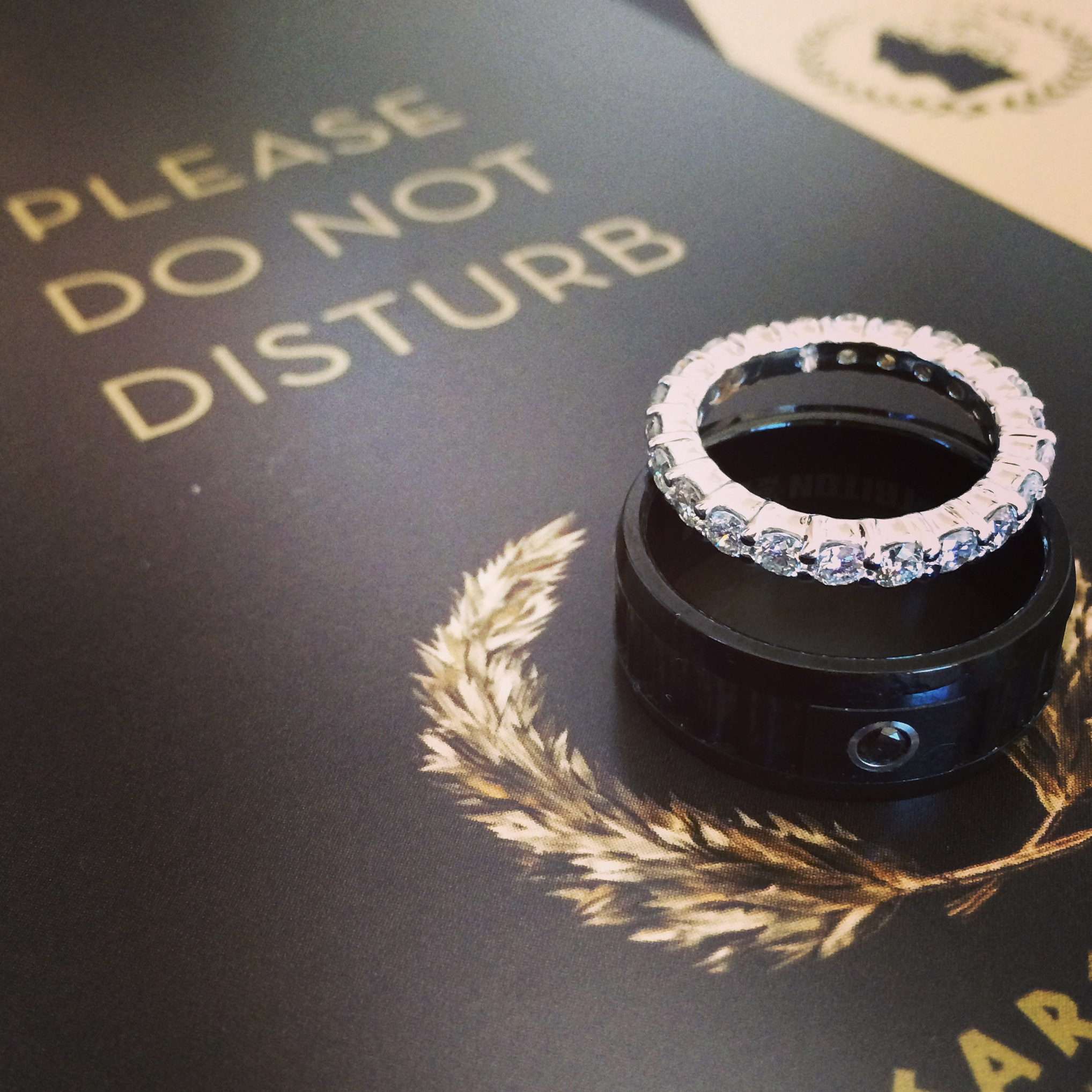 Please Do Not Disturb - There are people getting married in the penthouse at Caesars Palace Las Vegas!  Photo by Andrea Eppolito .