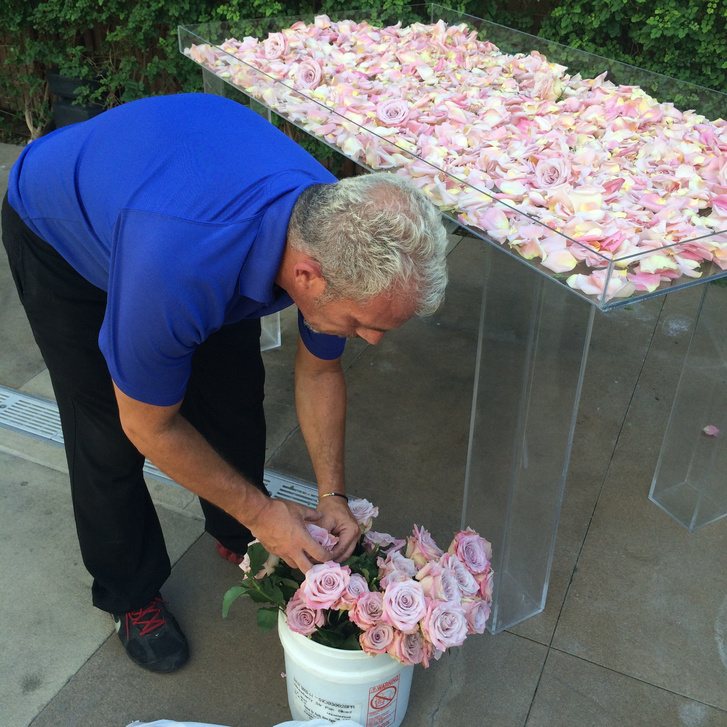 My darling David of Naakiti beheaded roses, placing each one by hand into a plexiglass display for the couple's escort cards.    Las Vegas Wedding Planner:    Andrea Eppolito Events    |  Wedding Venue:    Mandarin Oriental Las Vegas