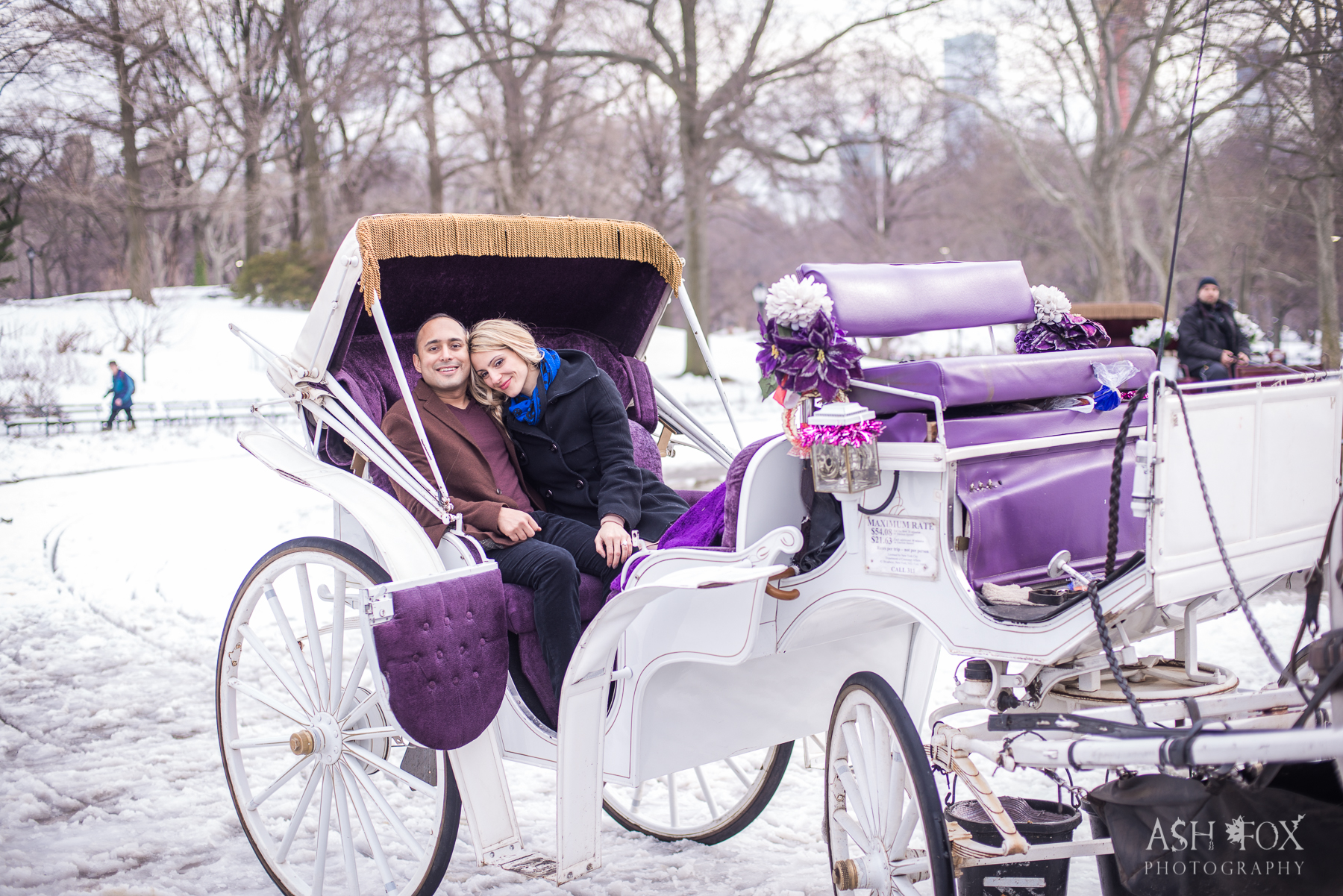 Horse and carriage ride proposal.NYC Central Park Engagement. Destination Wedding Planner Andrea Eppolito Photography by Ash Fox Photography.