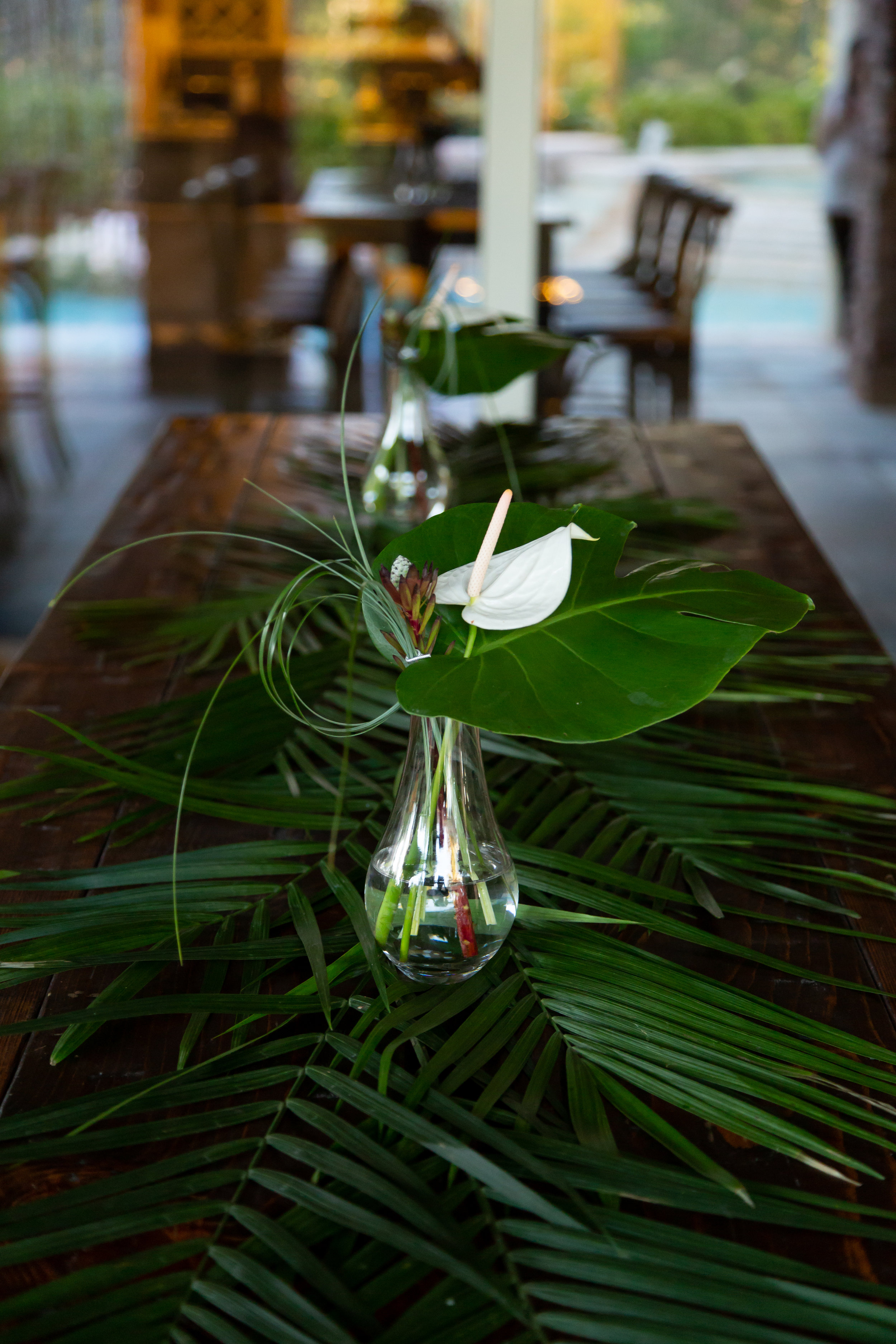 Big leaf centerpiefes. Las Vegas Event Planner Andrea Eppolito planned a Havana Nights Birthday Party for Pop Star Wajdi Kassas. By Dzign provided all decor, with lighting from LED UNplugged and photos by Adam Frazier.