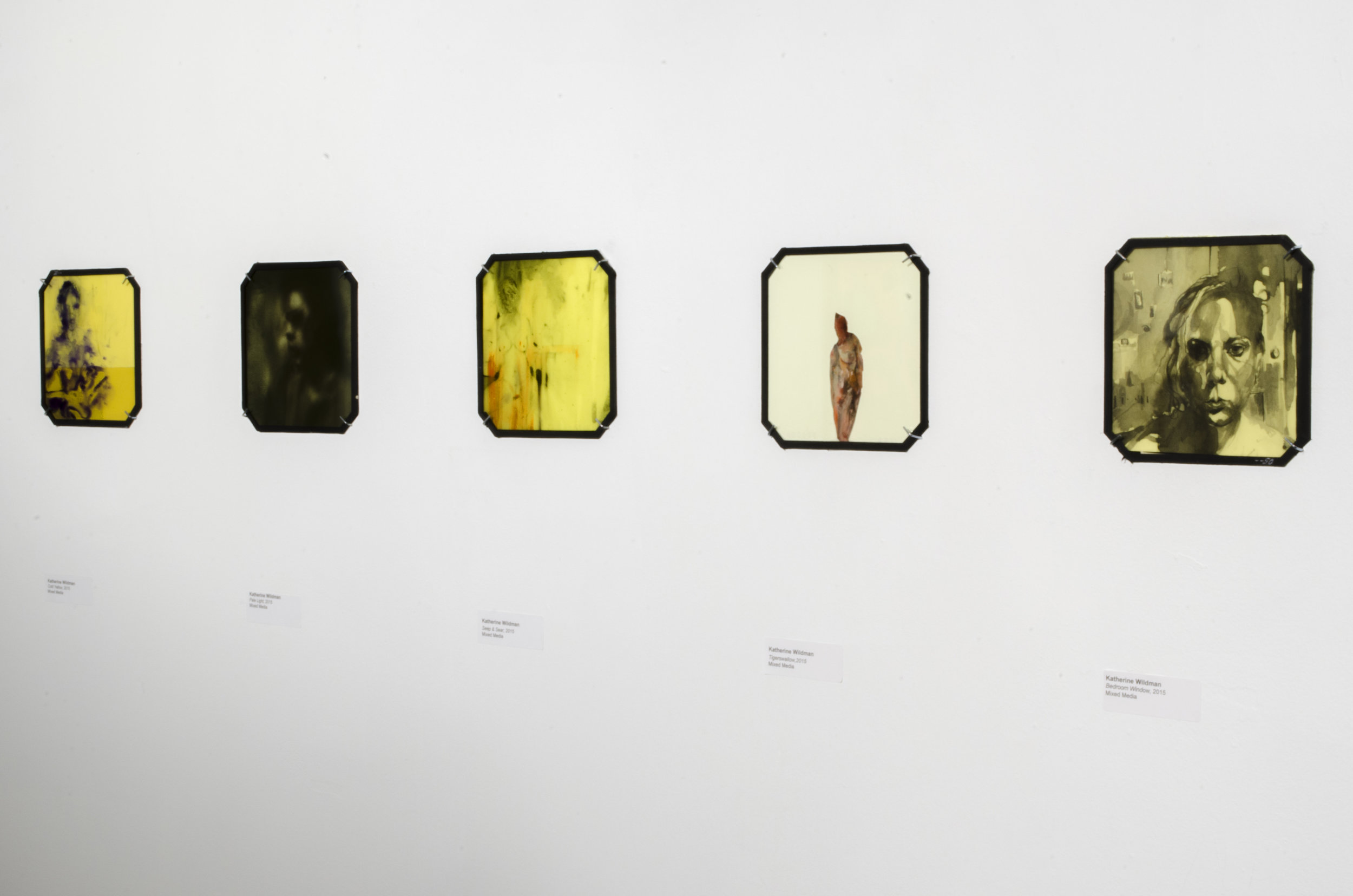 Installation Shot of Glass Series