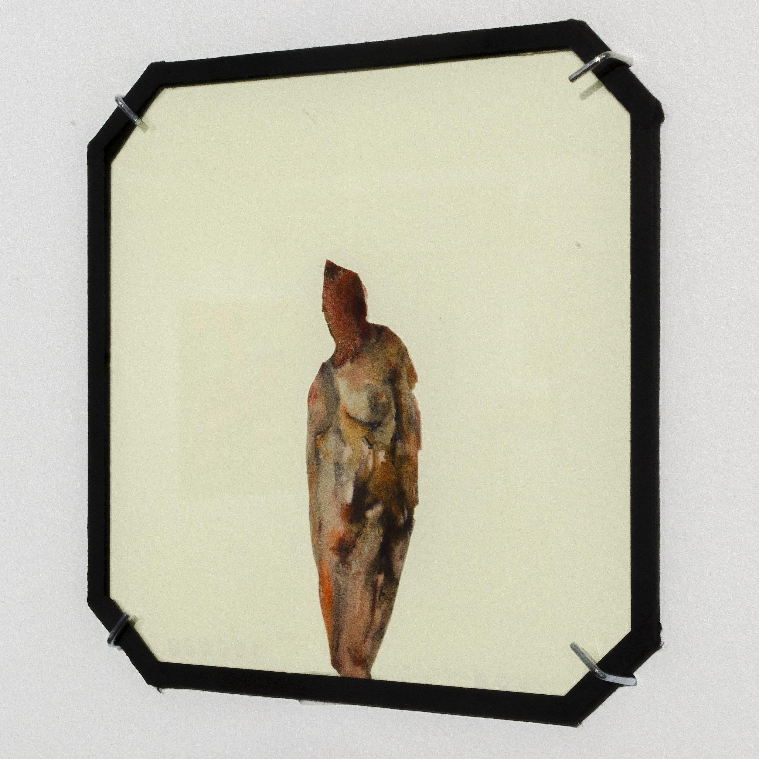 "Installation Shot of ""Tigerswallow"", Glass Series"