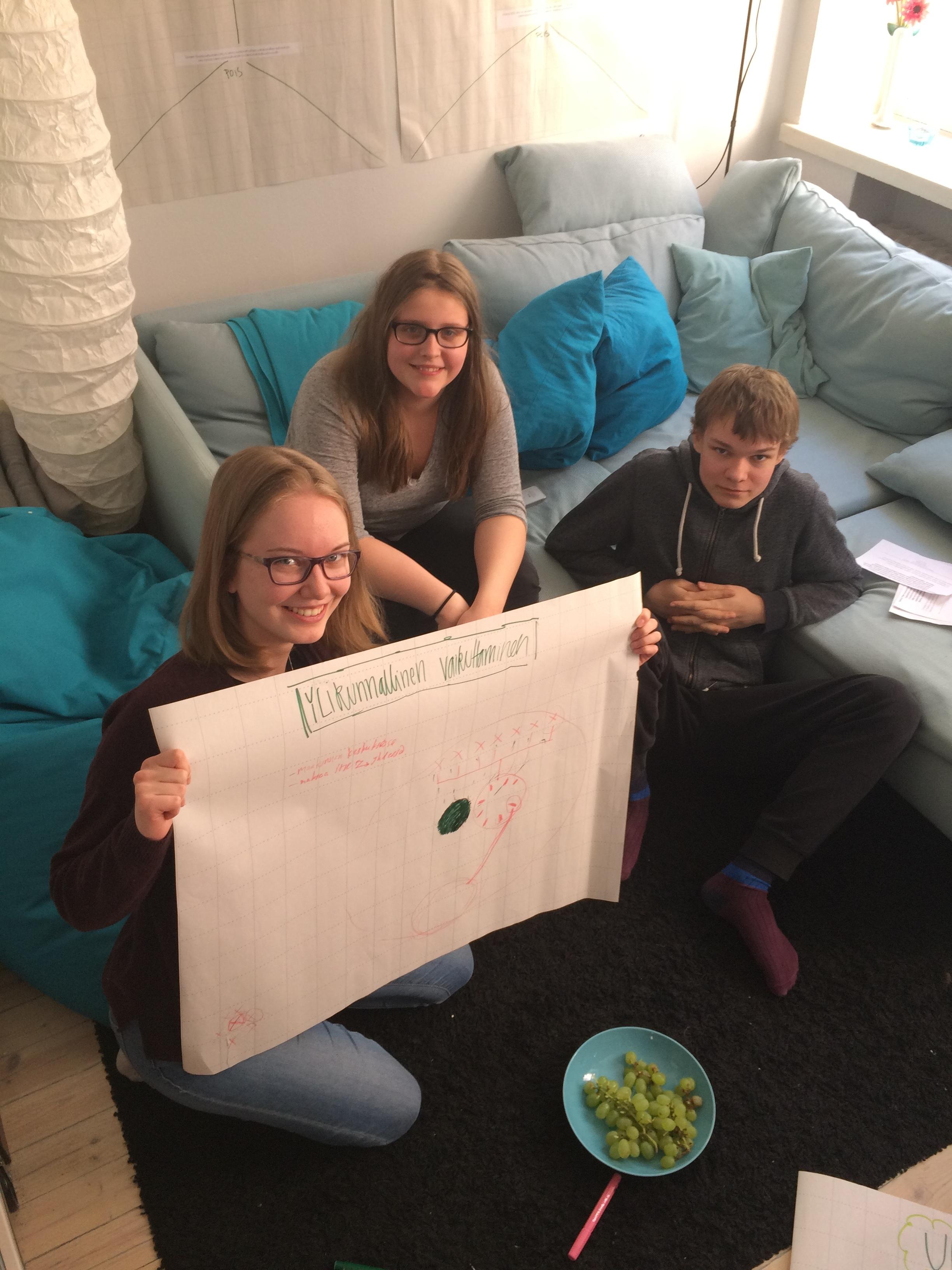 Perusta, vakiinnuta, vahvista -hankkeen ohjausryhmä (Ada, Petra ja Antti)ideoi myös ylikunnallista vaikuttamista omien nuorisovaltuustojen kuulumisten jakamisen lisäksi.