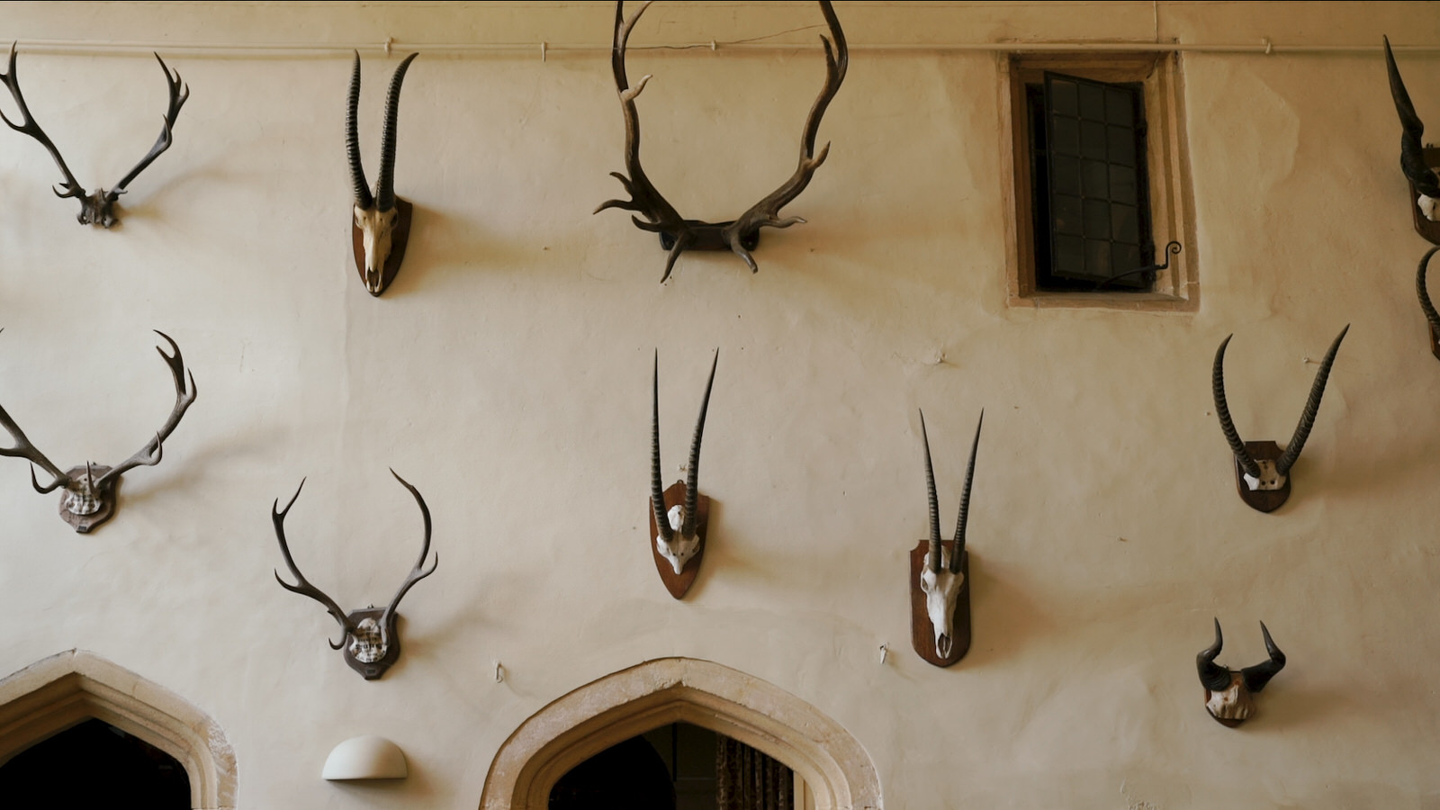 Brympton House  antlers on wall