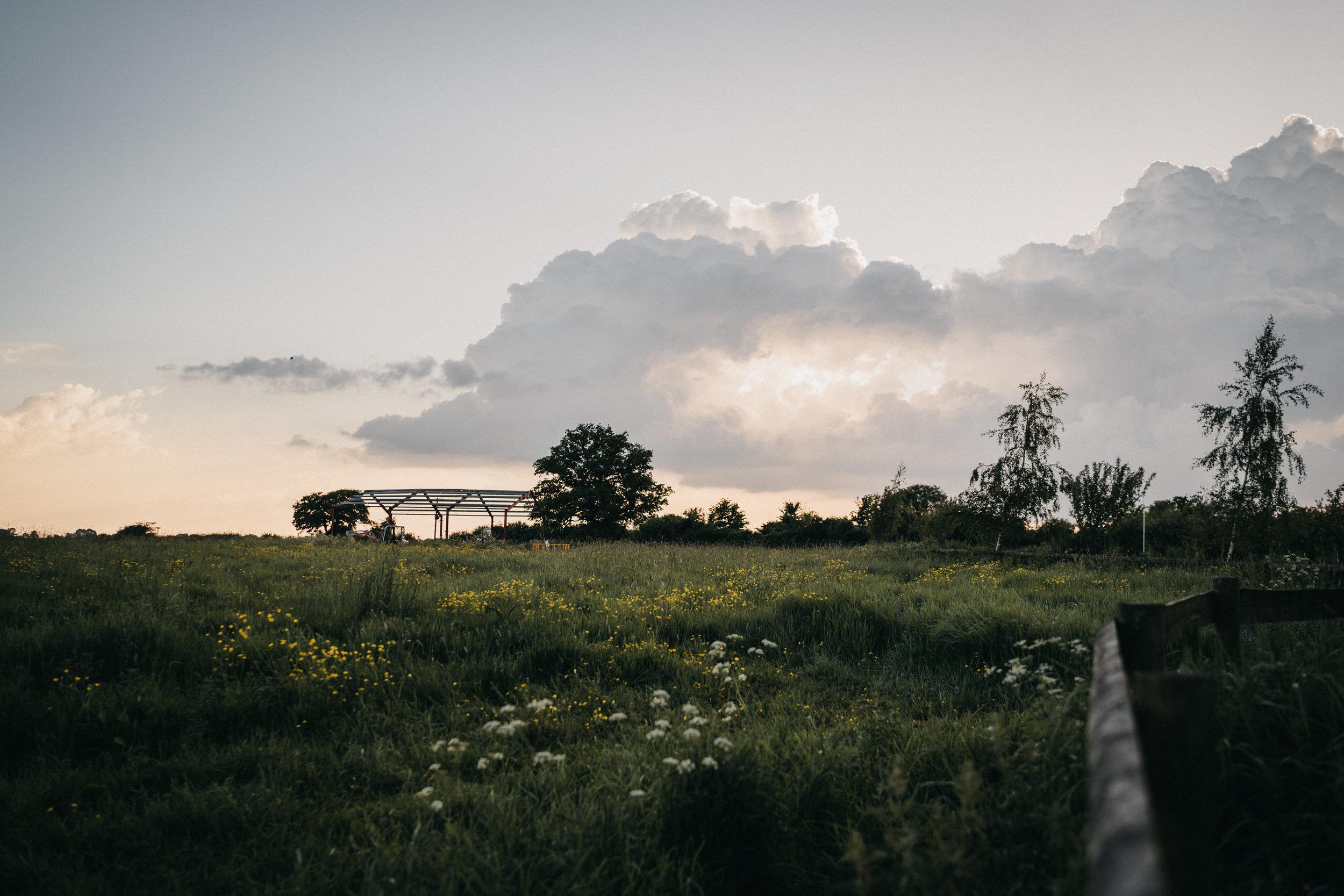 Winkworthfarm-618.jpg