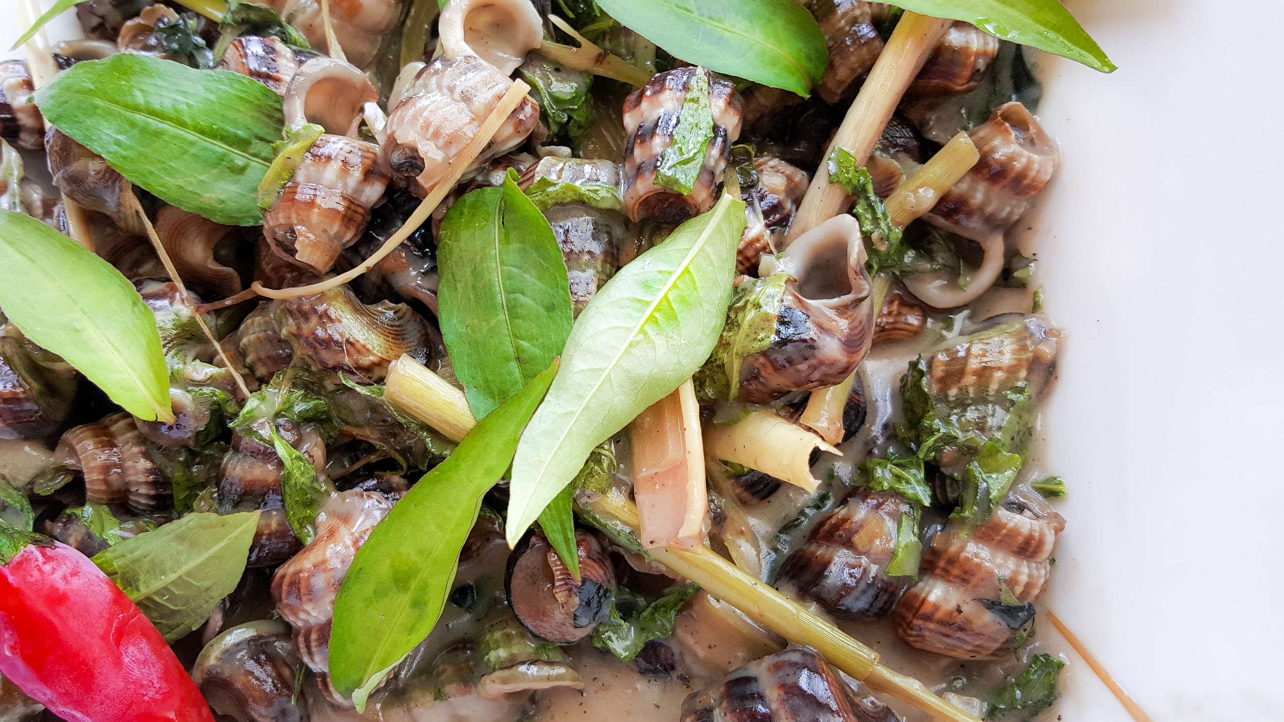 Sea Snails in Coconut Milk (Oc Len Xao Dua)