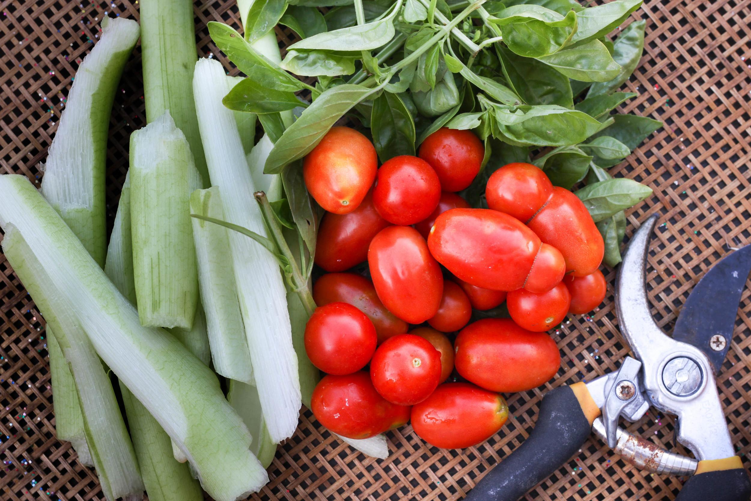 Taro stems ( Bac Ha) , cherry tomatoes and basil.