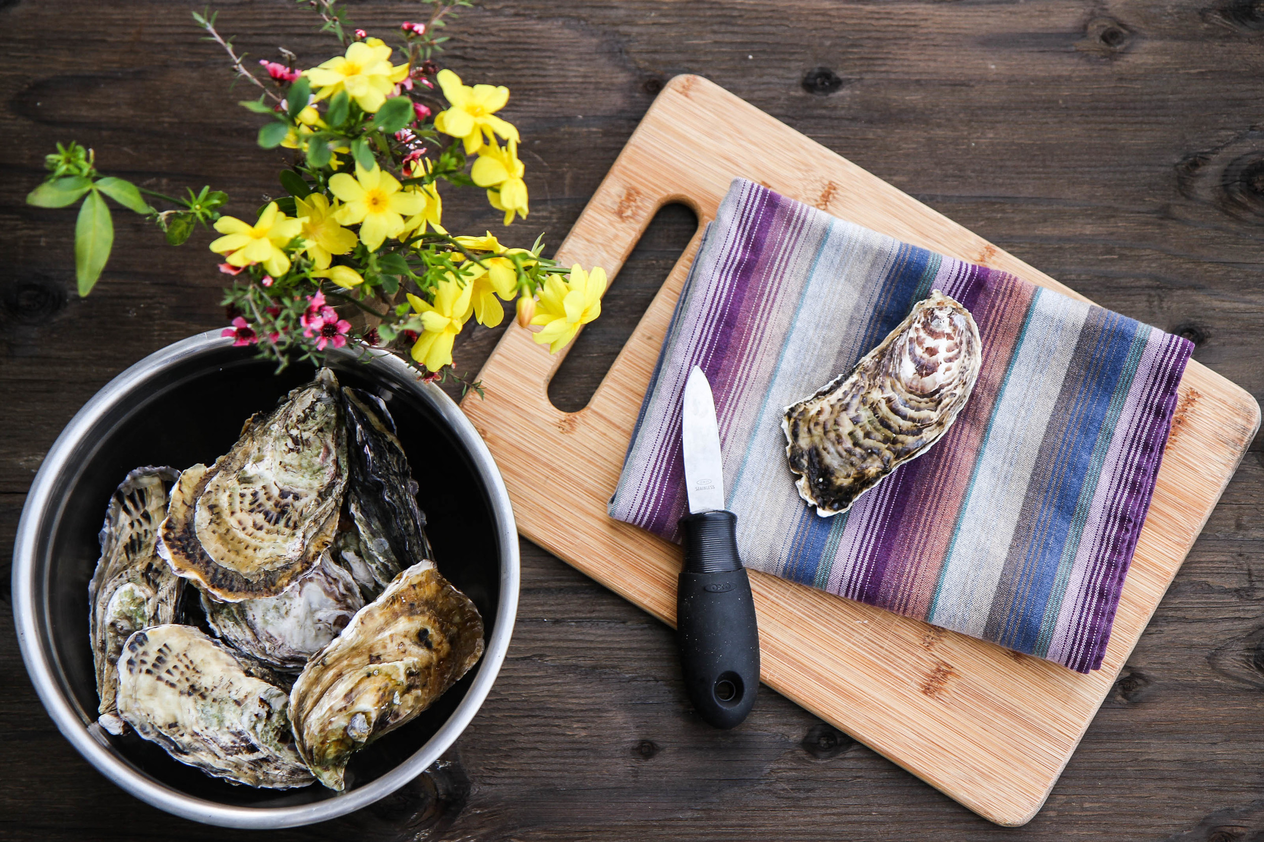Use a kitchen towel for easier gripping when shucking oysters.