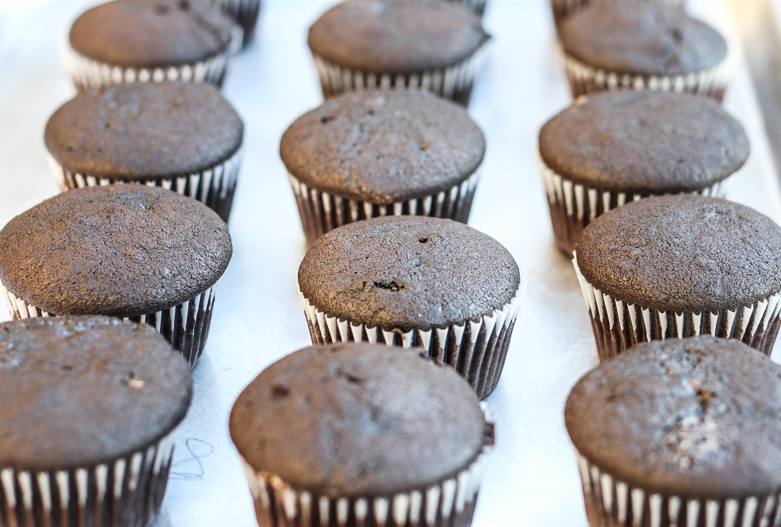 Mocha/Coffee Cupcakes Ready for Frosting
