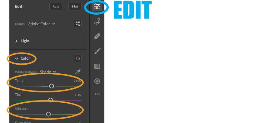 Adobe Lightroom Editing: Color