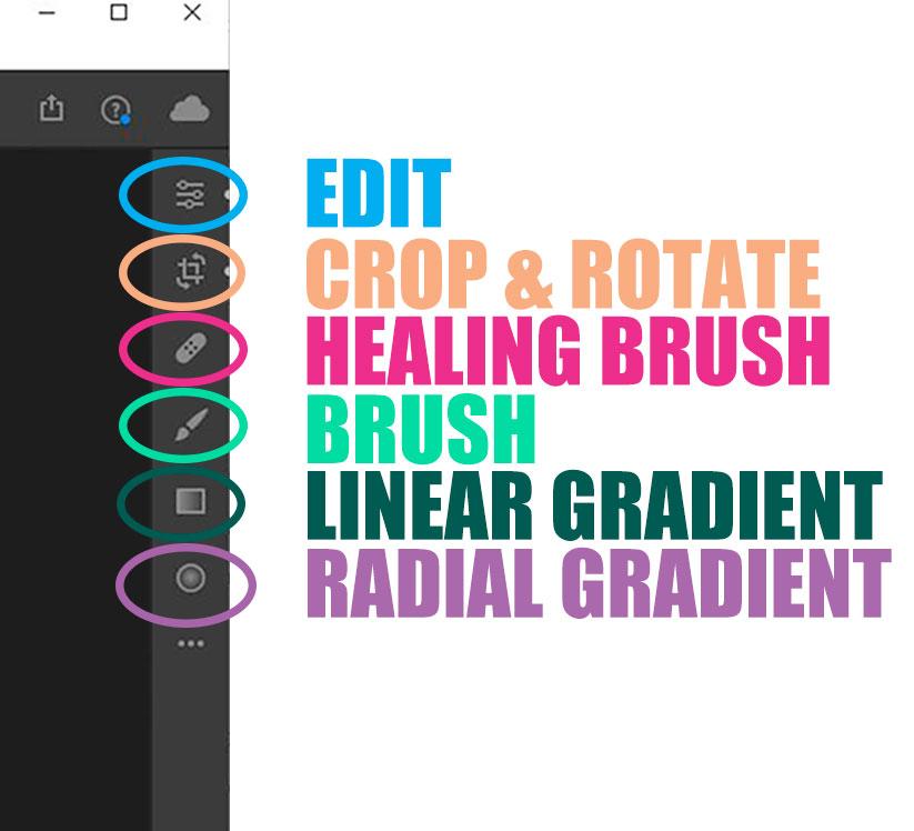 Adobe Lightroom Main Categories