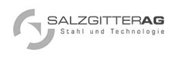 Salzgitter.jpg