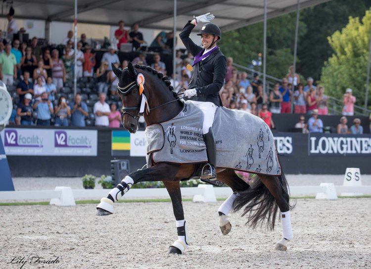 Revolution Foto: Lily Forado  http://www.horse2rider.com/seneste/latest/2018/8/4/andreas-helgstrand-and-revolution-world-champions-for-5-year-old-horses