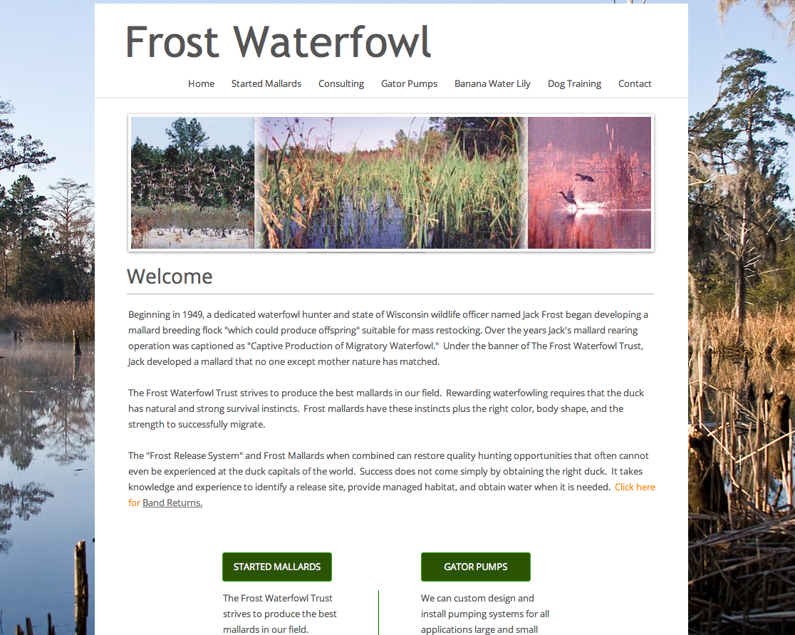 Frost Waterfowl
