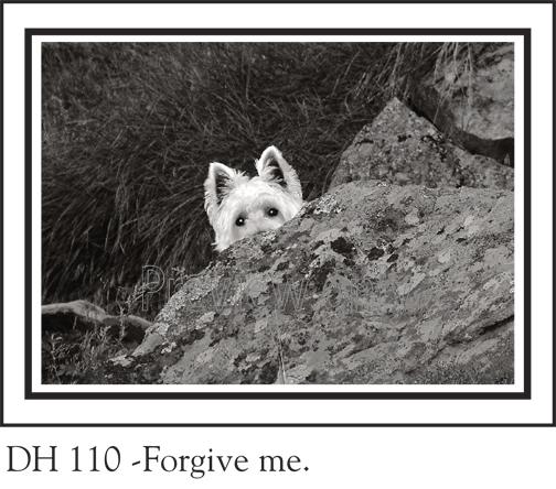 DH_110prev_117.jpg