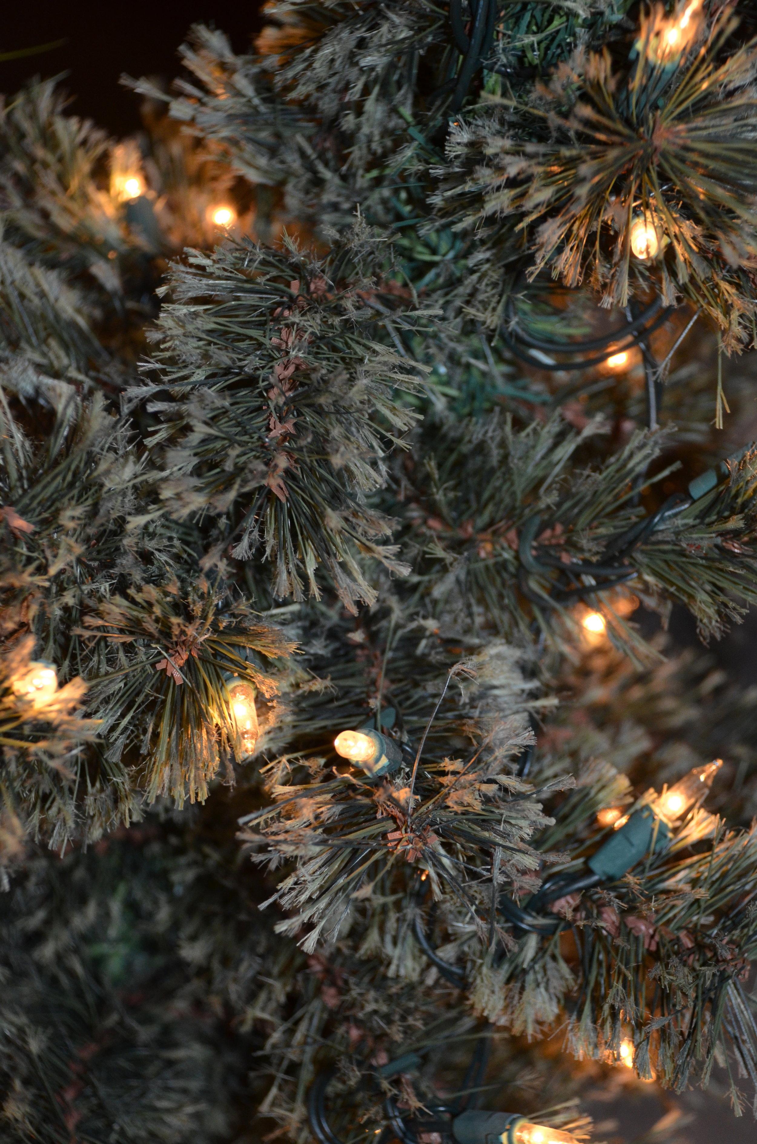 christmas tree lights.jpg
