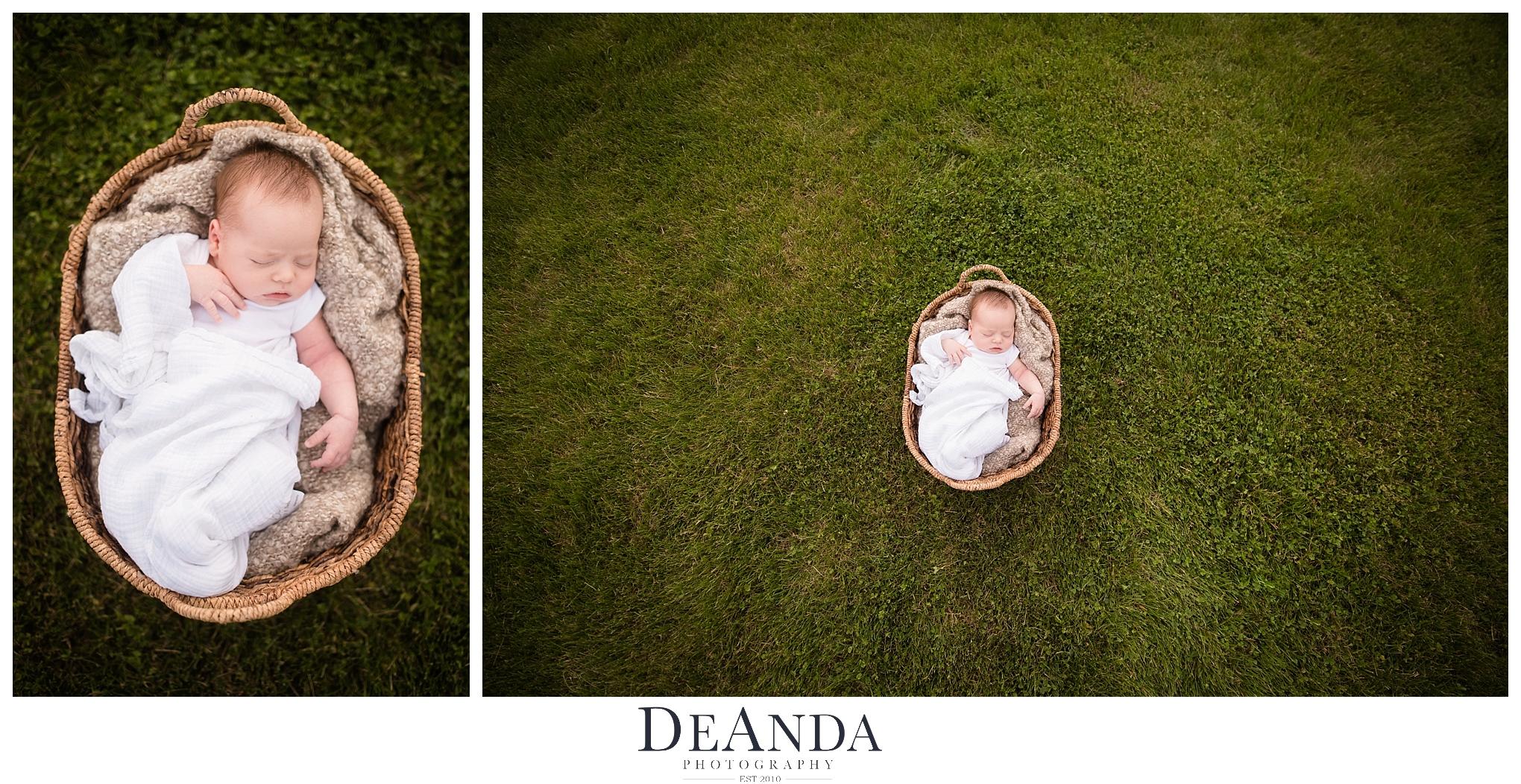 Newborn Photo in basket
