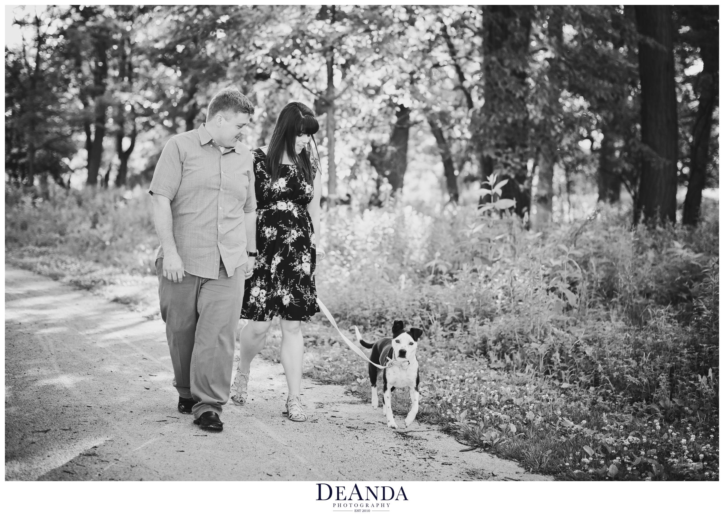 st.james farm photos with dog
