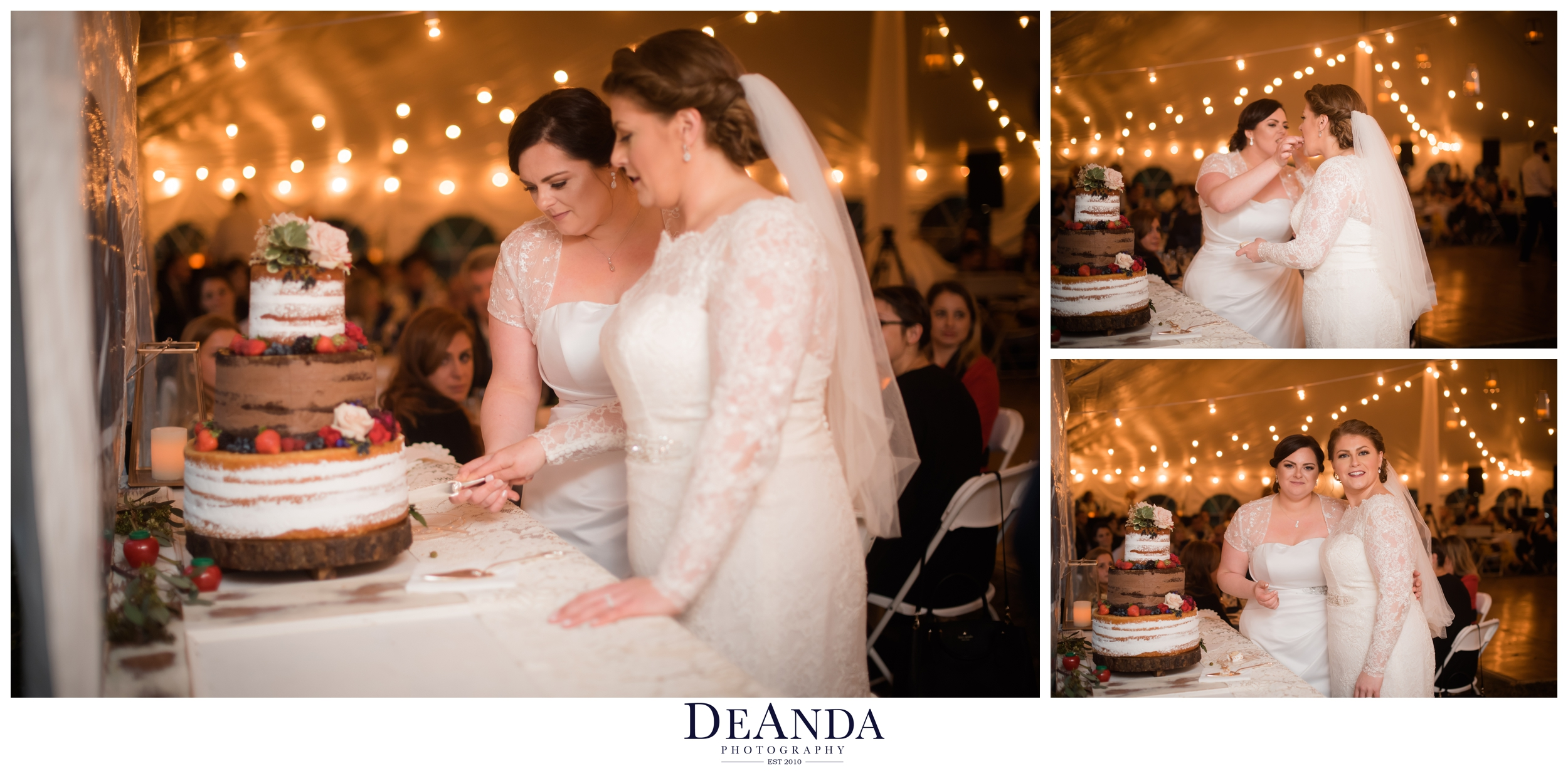 two brides cutting their cake in their tent wedding outside of chicago in the suburbs