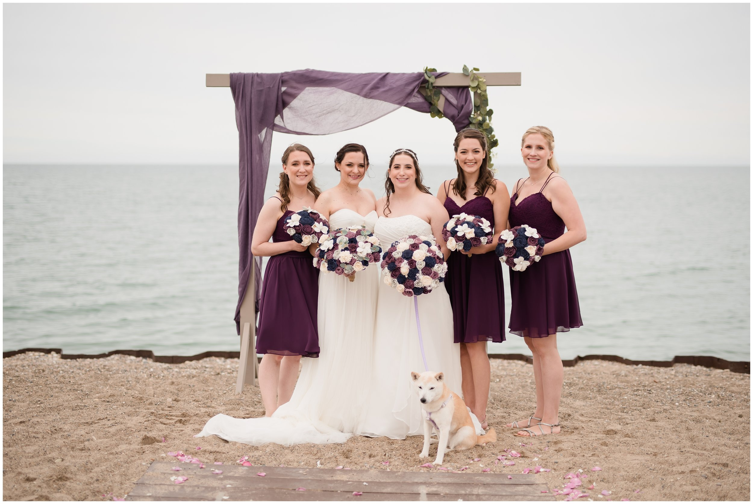 Two Brides and their wedding party
