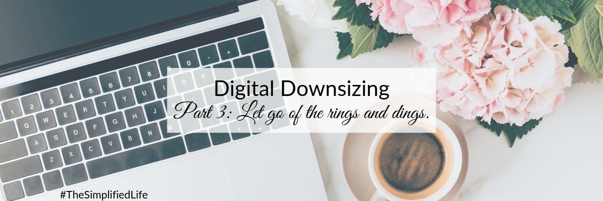 Blog - Rings & Dings.png