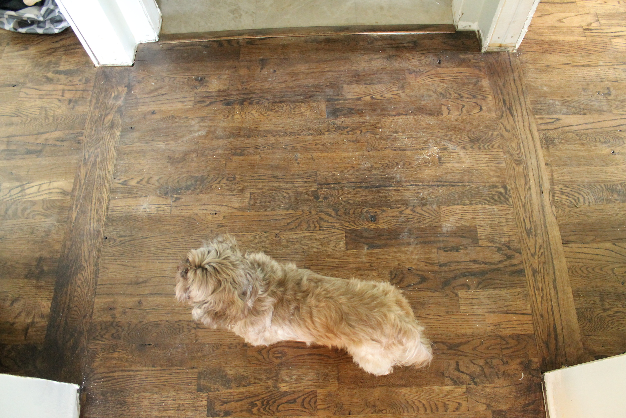 Elizabeth Burns Design | DIY Utility Grade Oak Flooring - How to install solid hardwood flooring