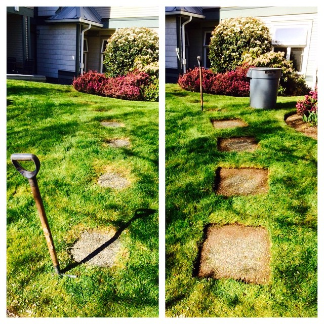 Our crews are always focused on what will make the highest impact for our clients. Re edging overgrown slabs in the lawn has to be right at the top of the list for impact work.