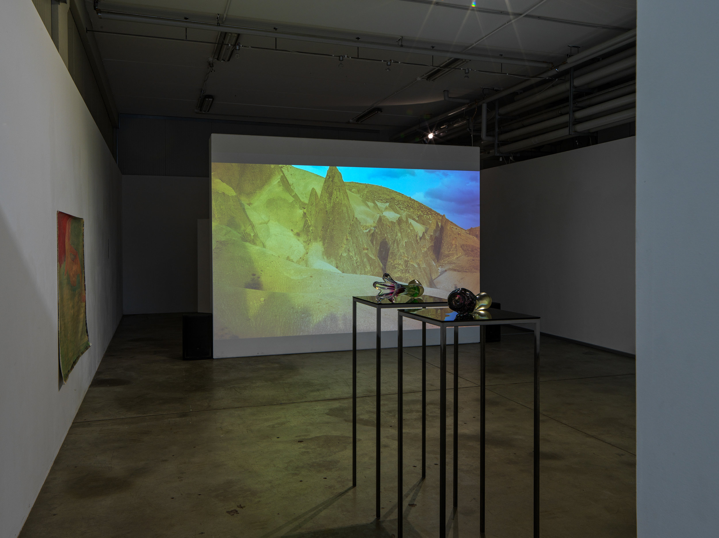 installation_view_Ursula_Mayer_Barbara_Tavella_photo_G.R.Wett.jpg