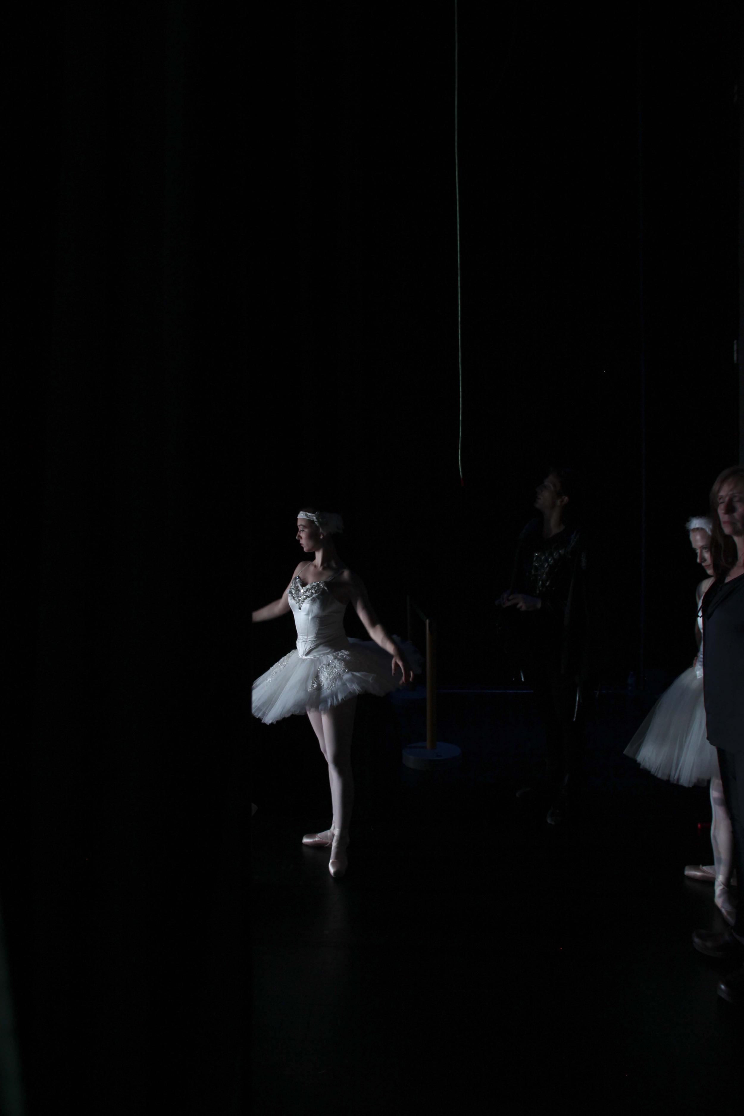 2013-spring-balletchicago_13.jpg